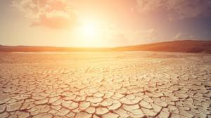 siccità caldo