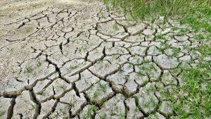 Riscaldamento globale e migranti climatici